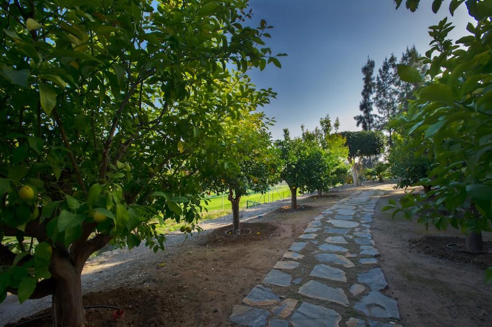 4 bed Property For Sale in Los Arqueros,  - 13
